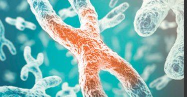 Telomerlerinizi uzatın yaşlanmayı yavaşlatın